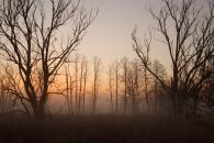 Dolina Samicy Kierskiej