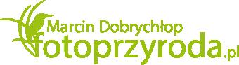 Marcin Dobrychłop - Fotografia przyrodnicza